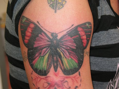 Big Butterfly Tattoo Designs  Expo