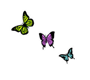 Small Butterfly Tattoo Design  Expo